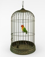 Birdcage with bird