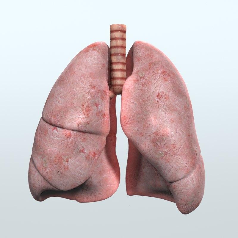 Respiratory_01.jpg