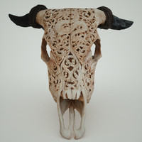 3d goat skull decorated dragon model