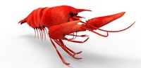 lobster 3d obj