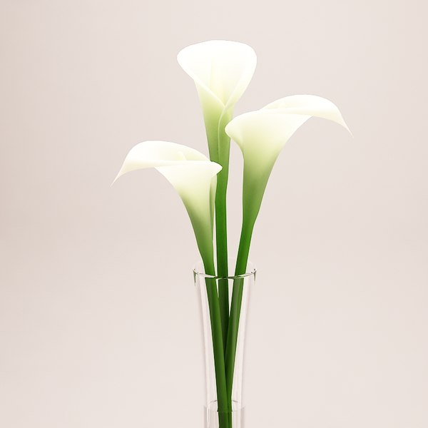 3d calla lily flower tall - Calla Lily -  Tall Vase... by feel_funny