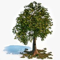 maya fairy tale tree