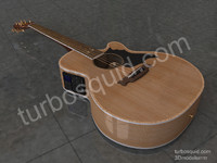 Acoustic Guitar Takamine G Series Concept