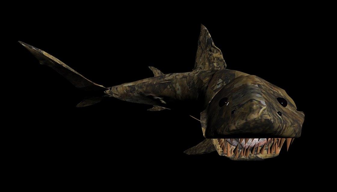 00_shark_01.jpg