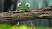 frog model