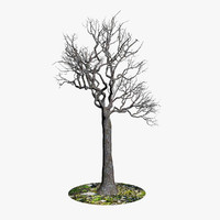 3d model generic naked tree branches