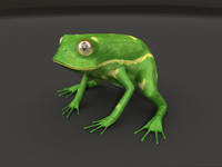 ma fully rigged frog