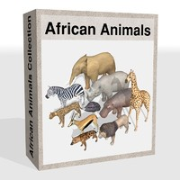 african animals cheetah elephant 3d max