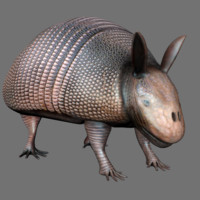 3d animal alien creature