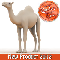 3d camel modeled model