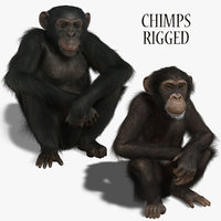 Chimps (RIGGED)  (FUR)