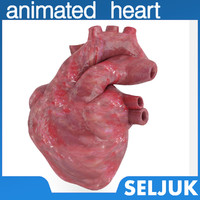 c4d human heart animation realistic
