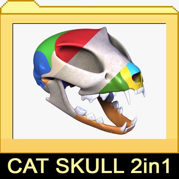 cat-skull.jpg