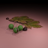 chestnuts leaves 3d model