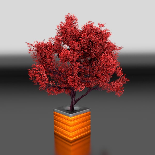 potted tree test.png