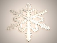 snowflake snow flake max
