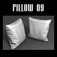 3d pillow interior model