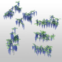 flowers wisteria 3d max