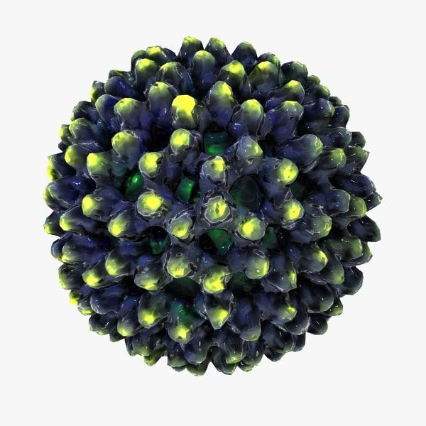 Rotavirus.jpg