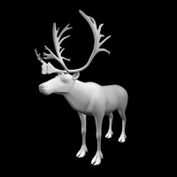 3d reindeer model