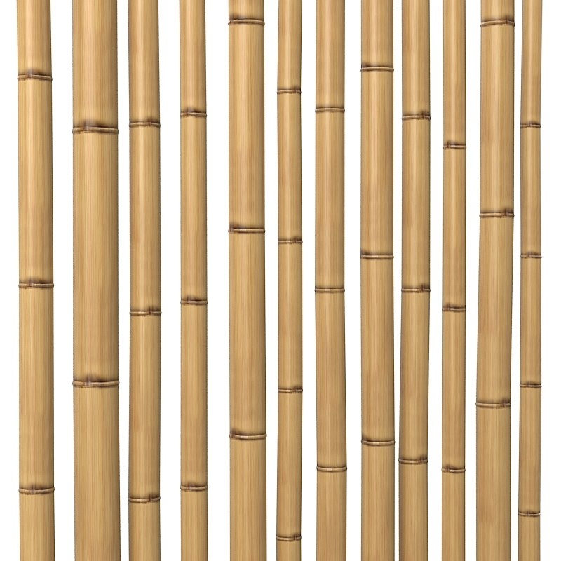 Bamboo Stem Dry oriental interior decoration 0000.jpg
