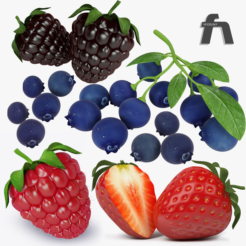 forest_fruits1.jpg