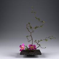 3d ikebana flower