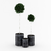 3d potted birch-trees