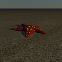 starfish star fish 3d model