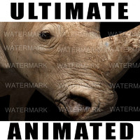 Ultimate Rhino