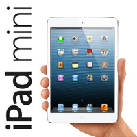 max apple ipad mini