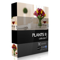 volume 21 plants flowers 3d model