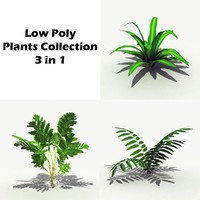 Low Poly Plants 3 in 1