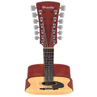 12 String Acoustic Guitar: Max Format