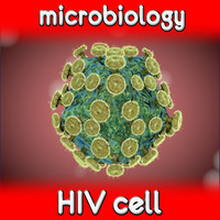 Viruses. HIV cell
