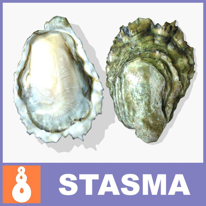 Oyster_view_A.jpg