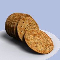 dry salty cracker bisquit 3d 3ds