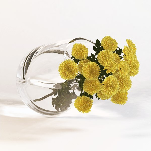 chrysanthemum01.png