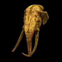 Gold Statues (Elephant)
