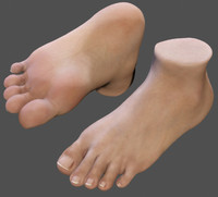 realistic foot (textured)