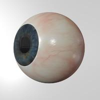 human eyeball eyes 3d blend