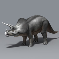 maya triceratops cretaceous ceratopsidae ceratopsid