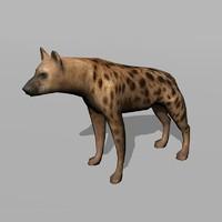 3d hyena uv model