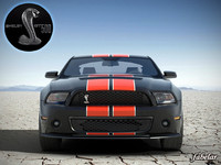 Shelby GT500 2010 std mat