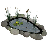 fish pond 3d model