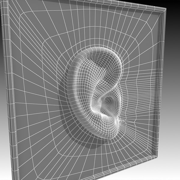 ear 3d c4d - Ear... by Imagework