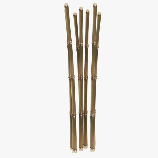 3d model dried bamboo cane for Uses for bamboo canes
