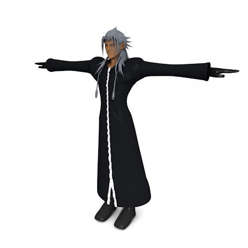 Xemnas_Perspective.png