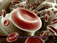 3d red blood cells model