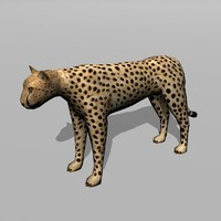 cheetah uv 3d max